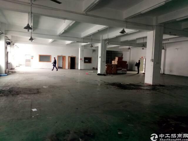 公明马山头新出原房东楼上1000平火爆招租