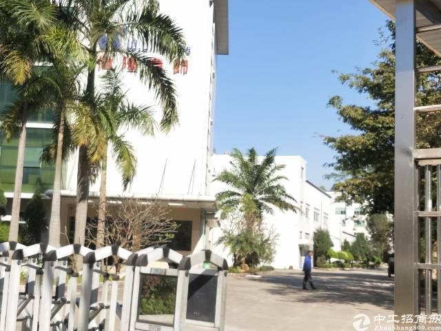 龙岗 (原房东)独院招租 厂房1-3层5900平米-图3