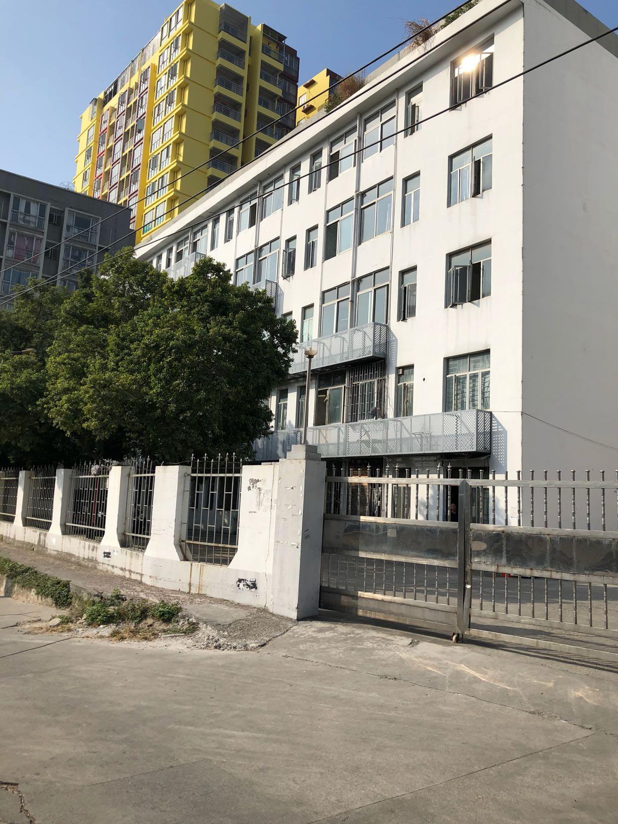 坂田独门独院厂房带精装修一楼楼上-图2
