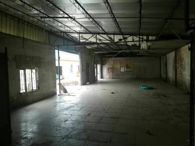 黄江靠近公明新出独院厂房适合各种行业,