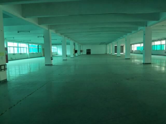 福永凤凰107国道新出带装修厂房3200平米一整层-图5