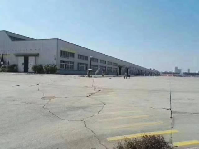 福永机场附近15000平米物流仓库出租-图3