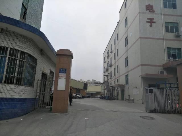 沙井万丰中心路边楼上1400平方装修厂房出租