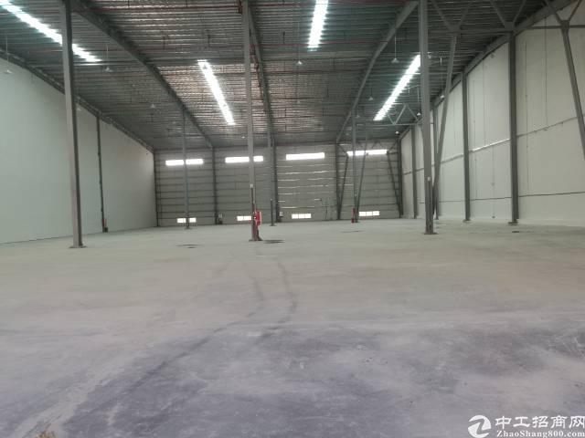 麻涌新出全新钢结构物流仓5万平方可以分租,证件齐全,丙2类消-图3