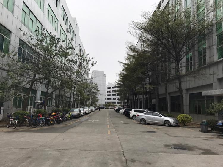 坂田五和大道边利金城工业区2480平带豪华装修厂房低价出租-图5
