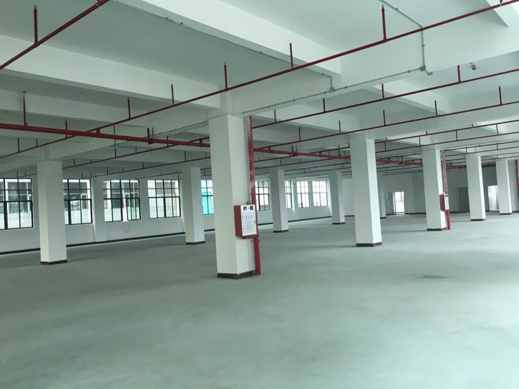 全新厂房出租,交通便利-图3
