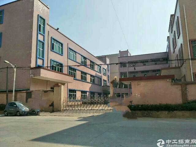 龙岗平湖凤凰大道或爱文学校楼上600平方米装修厂房招租