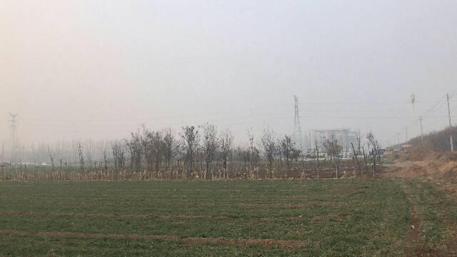 湖南省株洲市红本土地出售