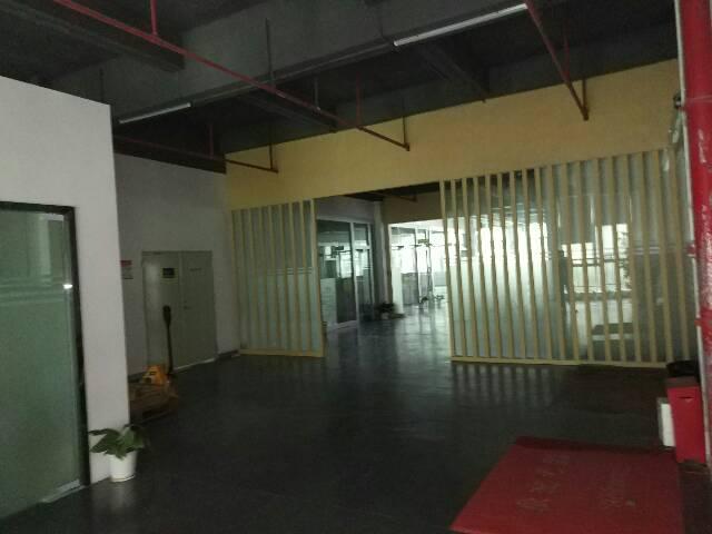 红本坂田五和大道旁精装修厂房-图4
