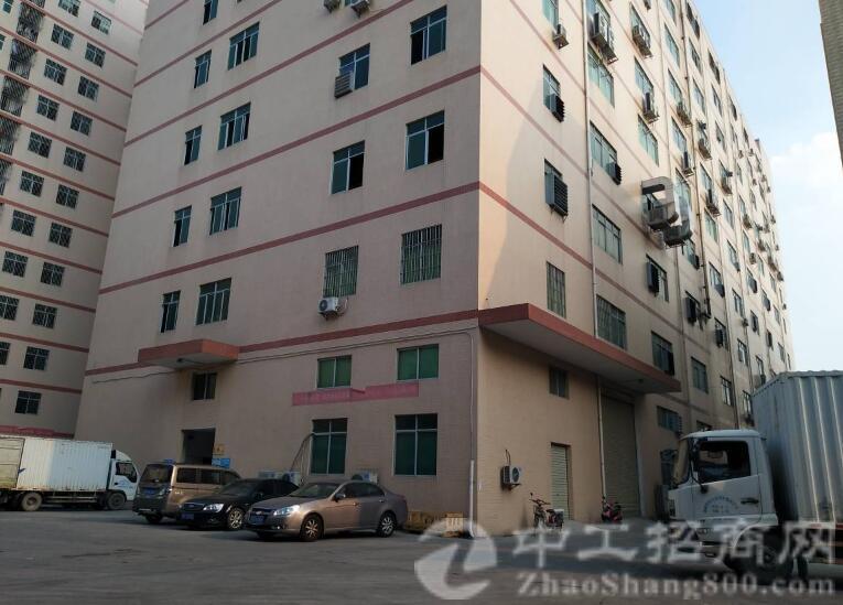 沙井107国道黄埔路新出楼上530平带装修厂房出租-图3