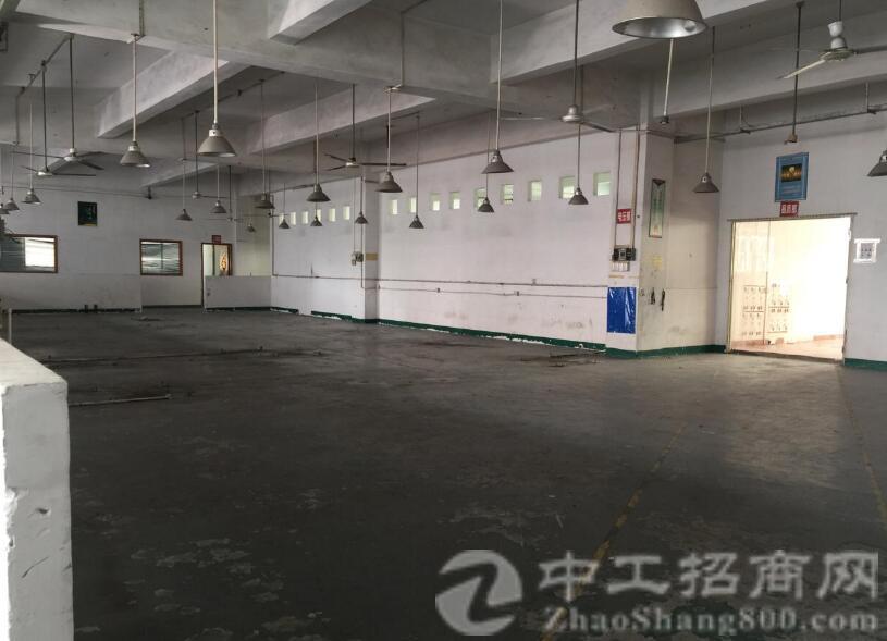 沙井高速出口新出楼上实际面积1600平米厂房出租