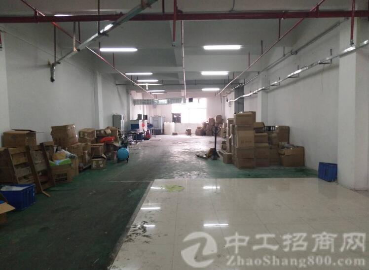 沙井107国道黄埔路新出楼上530平带装修厂房出租-图4
