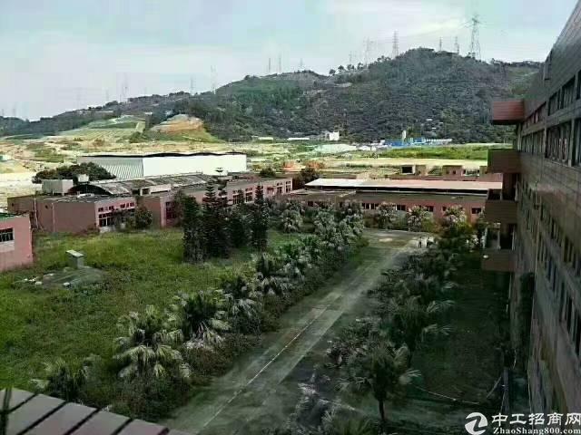 广东花园式厂房20000平-图4
