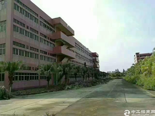 广东花园式厂房20000平-图7