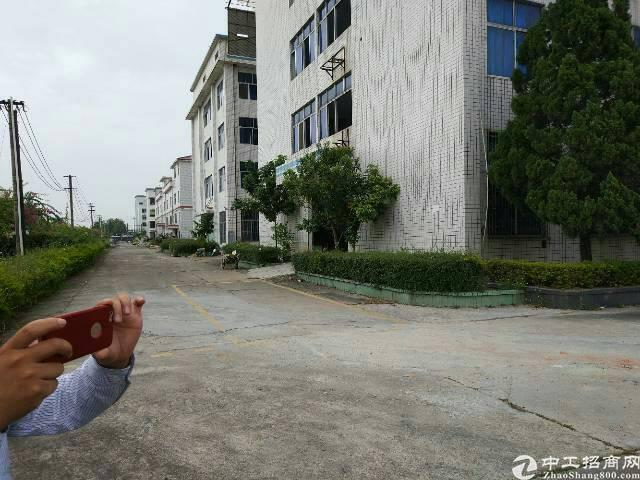 清溪镇中心区独栋厂房12000平方招租可分租
