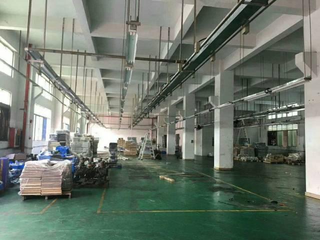 原房东独院1-5层两栋厂房,每栋7000平方-图3