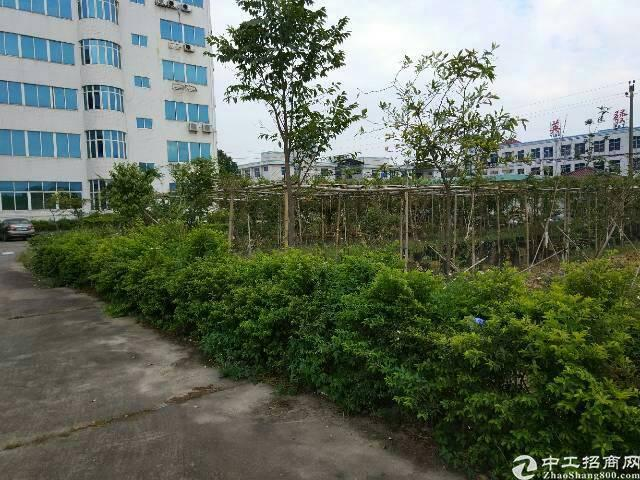 清溪镇中心区独栋厂房12000平方招租可分租-图5