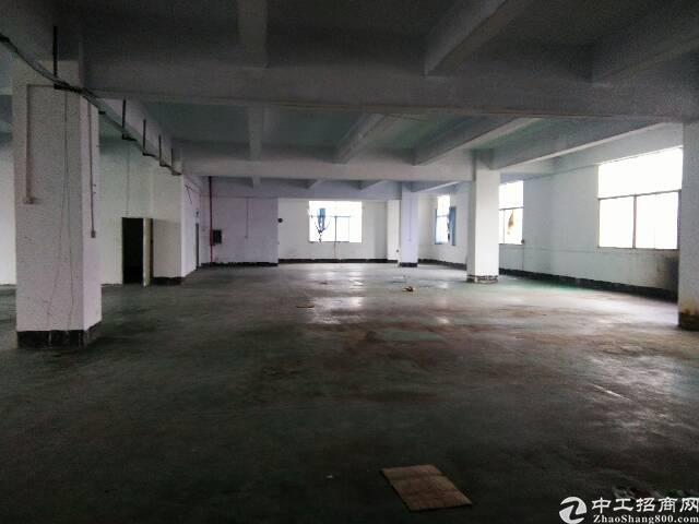 公明李松蓢2楼一整层1200平米带办公室装修厂房出租