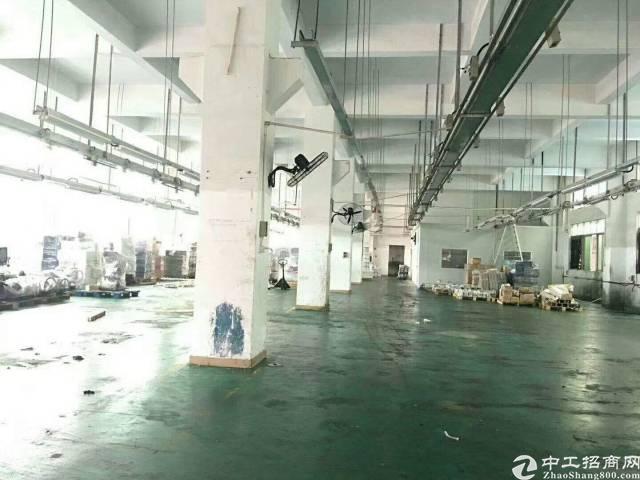 原房东独院1-5层两栋厂房,每栋7000平方-图2