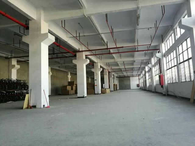 光明新区新出带牛角3800平方1楼可以分租