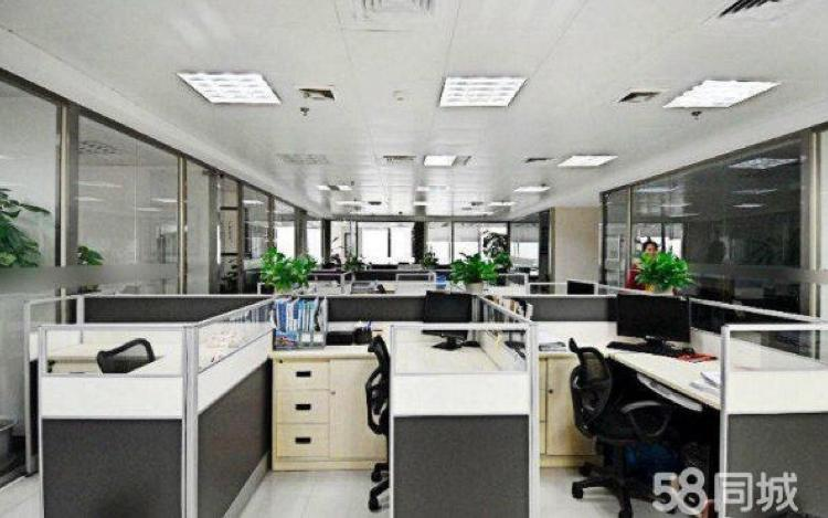 宝安松岗豪华装修写字楼218平方米低价出租