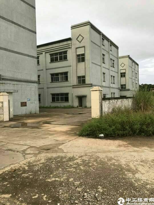 惠州惠环高速出口处原房东独院厂房9800平方招租-图2