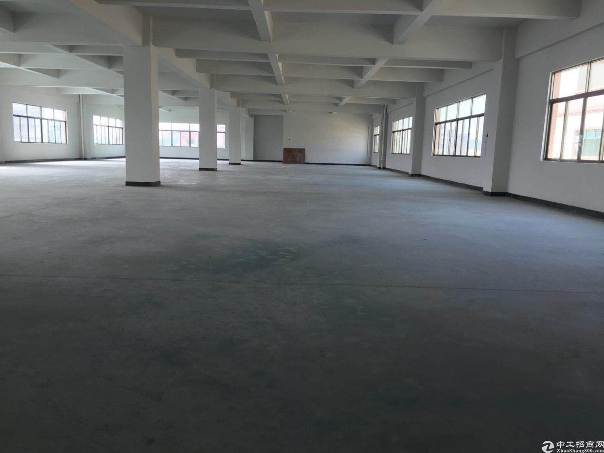 大朗新出标准厂房分租2⃣️楼1500平米3⃣️吨货梯一部