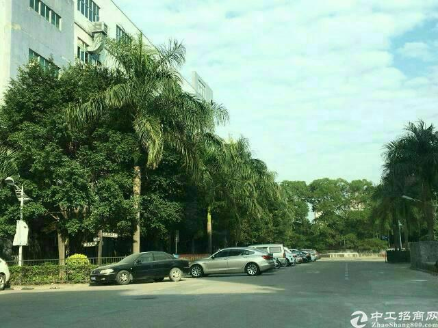 观澜福民新出楼上1000平米带精装修厂房出租-图5