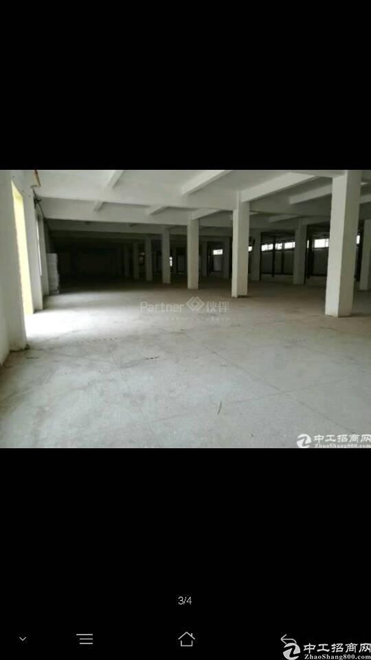 石排新出独院厂房1-4层独院厂房7500²米-图3