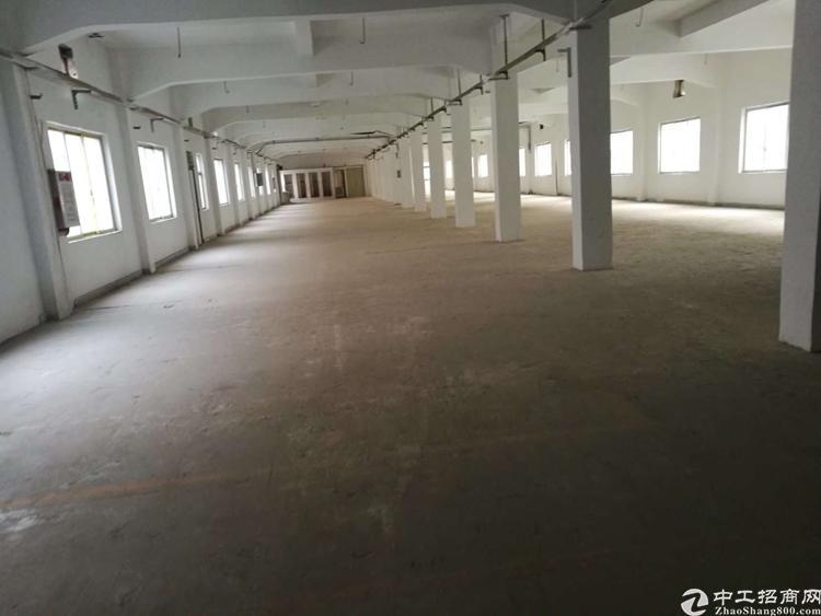 石碣新出原房东四楼厂房1500平米+五楼350平米租1.5万