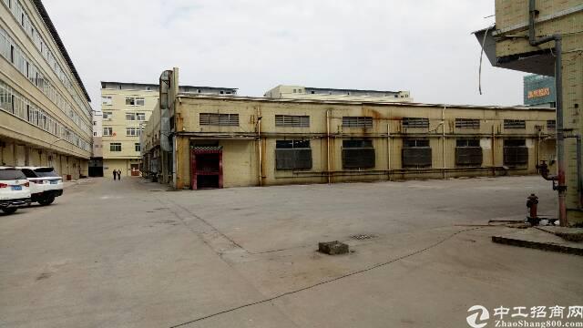 广州市新塘新出原房东厂房出租-图2