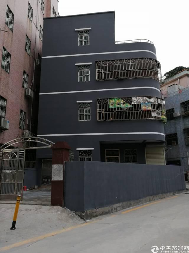 横岗 安良现成独栋公寓出租2000平方出租!