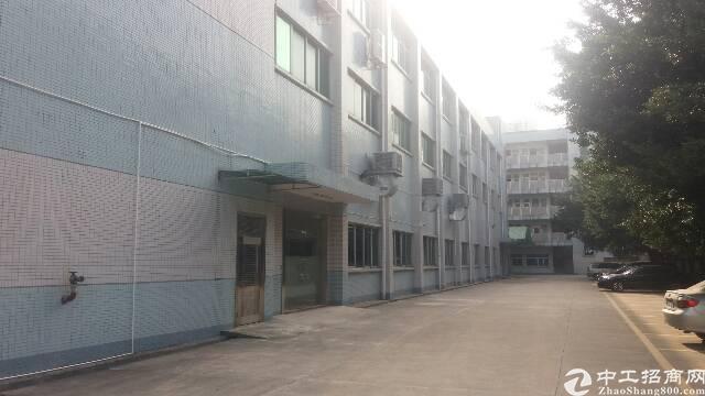 九成新厂房分租一楼1600平方米,水电齐全