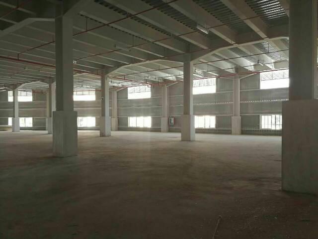 横岗沙荷路安良7000平方物流仓全新厂房出租可分租-图2