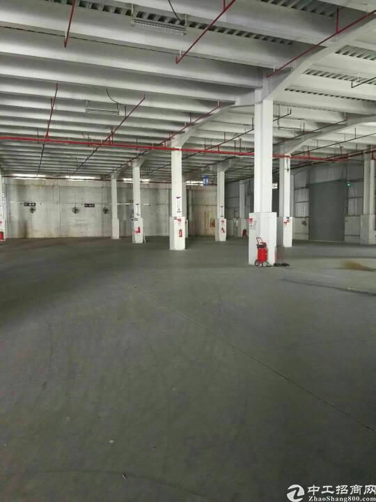 横岗沙荷路安良7000平方物流仓全新厂房出租可分租-图7