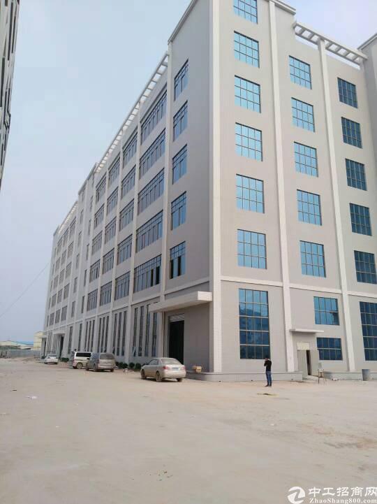 虎门沿江高速出口附近全新建好的厂房招租,总面积5万平米,可分