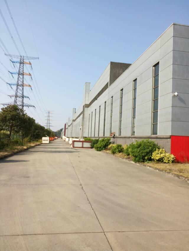 广东新塘镇出租单一层物流仓15000平米在建可预订-图3