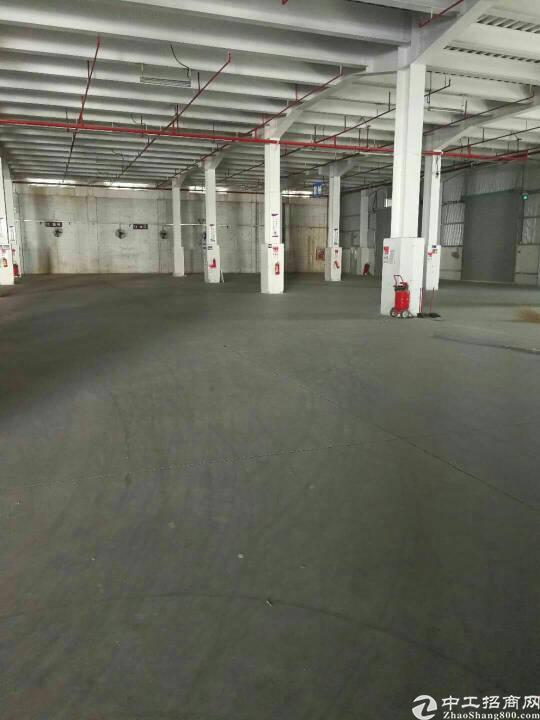 横岗沙荷路安良7000平方物流仓全新厂房出租可分租-图6
