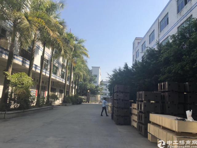 坪山 六联标准厂房450平招租,现房