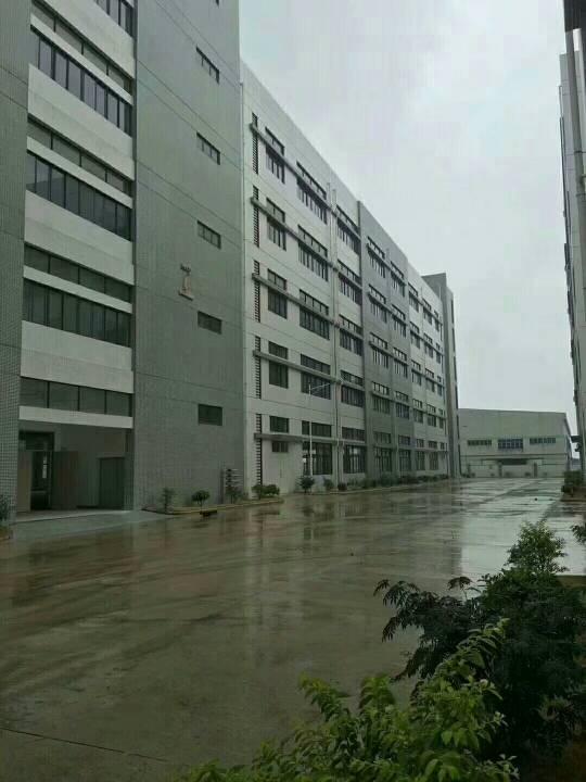 公明田寮带红本厂房10000平方,合同10年,水电齐全,现房-图3