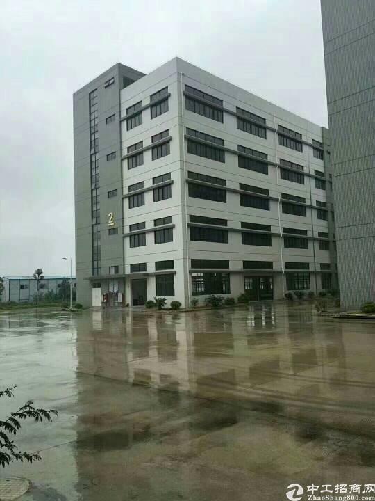 公明田寮带红本厂房10000平方,合同10年,水电齐全,现房-图2