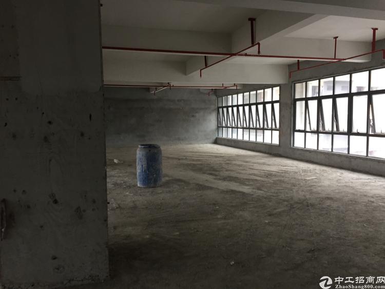 宝安产业孵化器办公大楼出租无公摊