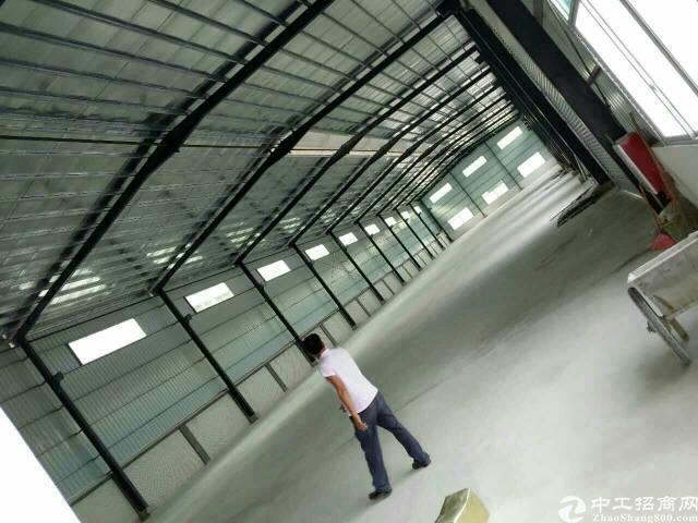 经典单一层钢构厂房出租可分租