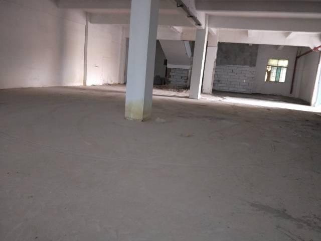 松岗沙浦工业园一楼600平米厂房