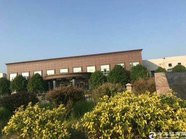 广州新塘独院单一层标准厂房2800平方招租