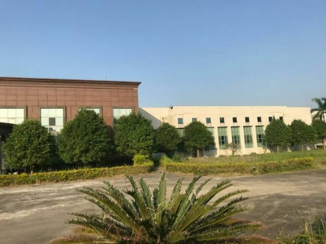 广州新塘独院单一层标准厂房2800平方招租-图2