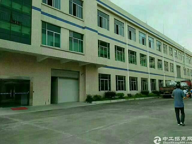 惠州惠阳镇隆原房东独院厂房9800平方招租可分租-图2