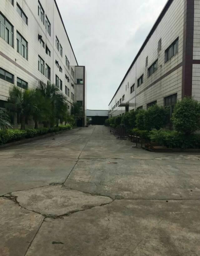 惠州惠环高速出口处原房东独院厂房9800平方招租-图3