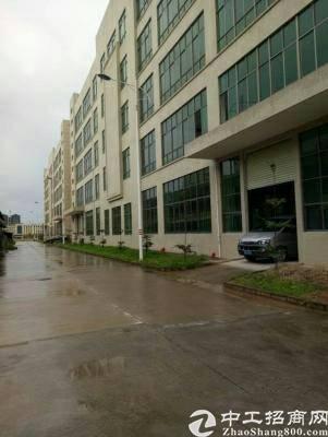 惠州博罗石湾独院标准厂房19000平方招租