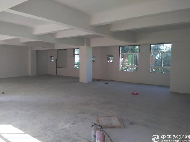 惠州新出标准厂房500平米,原房东现房-图2
